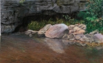 Cove Creek Spring,AR