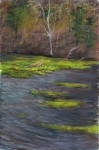 Lake Leatherwood, AR